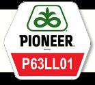 П63ЛЛ01 / P63LL01