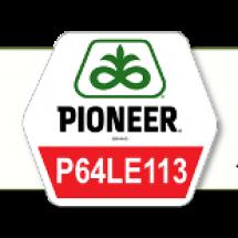 П63ЛЕ113/P63LE113