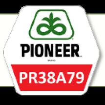 ПР38A79 / PR38A79 ФАО 330