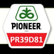 ПР39Д81 / PR39D81 ФАО 260