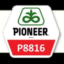 П8816 / Р8816 ФАО 300