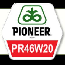 ПР46В20 / PR46W20