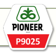 П9025 / P9025 ФАО 330