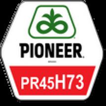 ПР45Г73 / PR45H73