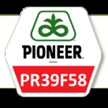 ПР39Ф58 / PR39F58 ФАО 290