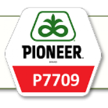 П7709/P7709 ФАО 190