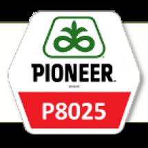 П8025/Р8025 ФАО 230