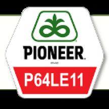 П64ЛЕ11 / P64LE11