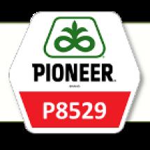 П8529 / P8529 ФАО 280