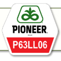 П64ЛЛ06 /P64LL06