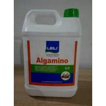 Альгаміно